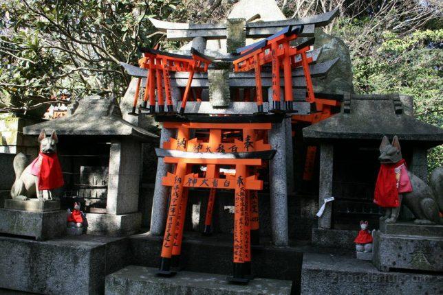 torii and fox
