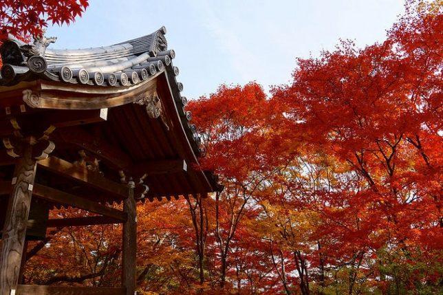 jojakko-ji autumn