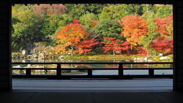 tenryu-ji autumn