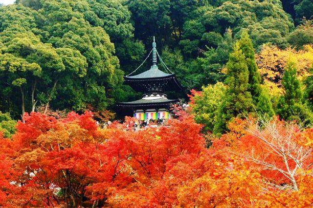 eikando pagoda