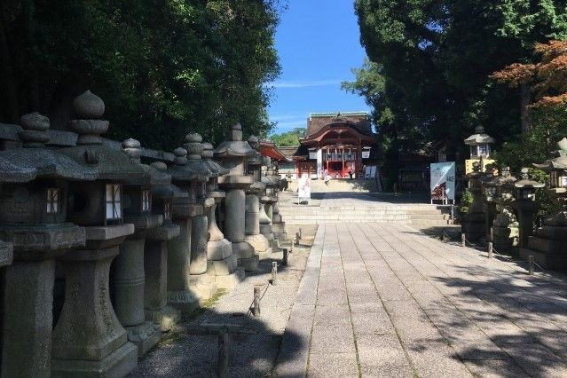 iwashimizu hachimangu