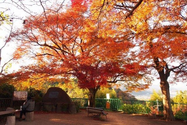 otokoyama view point