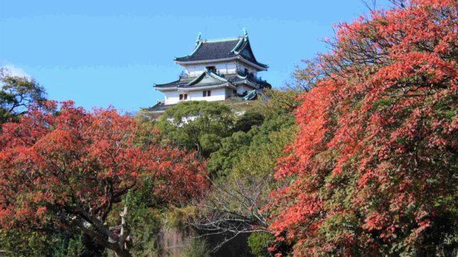 wakayama castle autumn