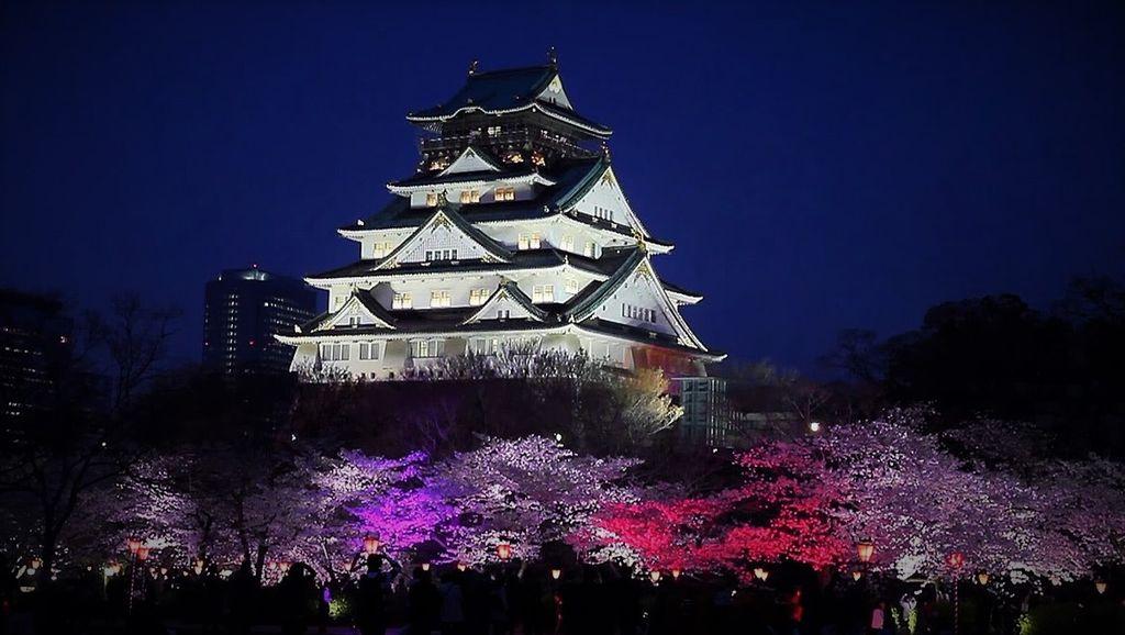 osala castle sakura
