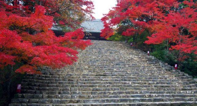 jingo-ji steps