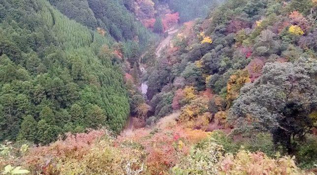 jingo-ji valley