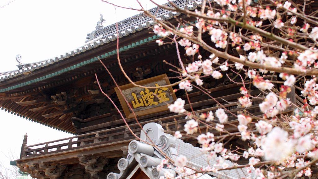 saidai-ji, nandaimon gate