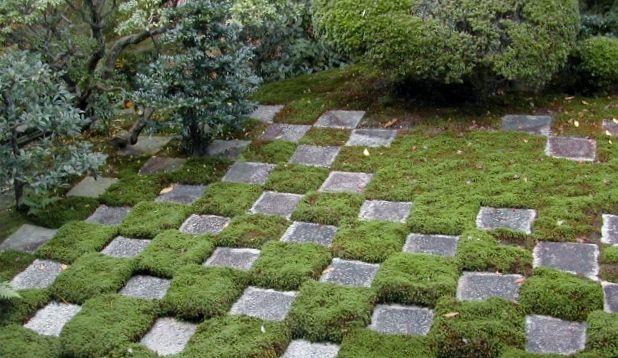 checkered garden