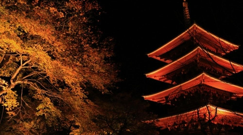 nariai-ji lit up
