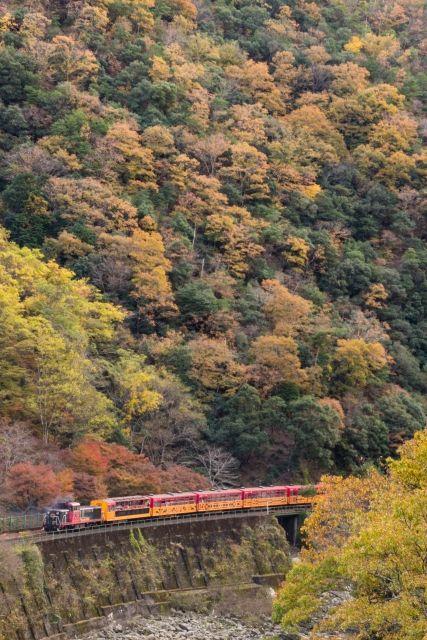 Sagano scenic torokko train