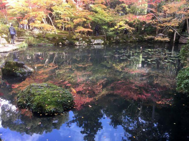 tenjyuan pond garden