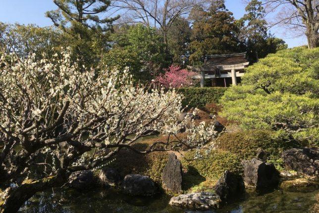 Muromachi garden