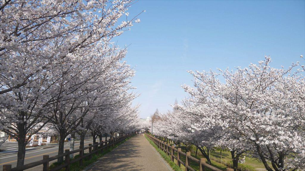 uchiage-gawa park
