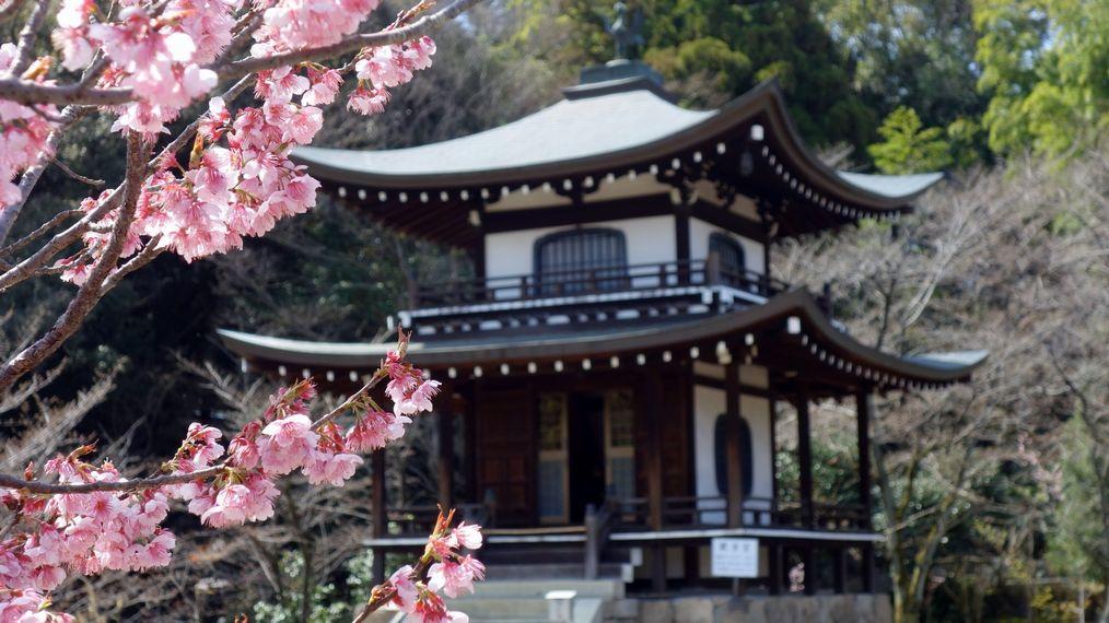 kaju-ji templa
