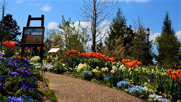 garden museum hieizan