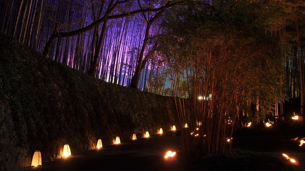rakusei bamboo park
