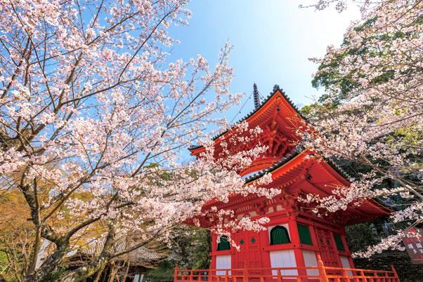 Kimii-dera Temple Pagoda