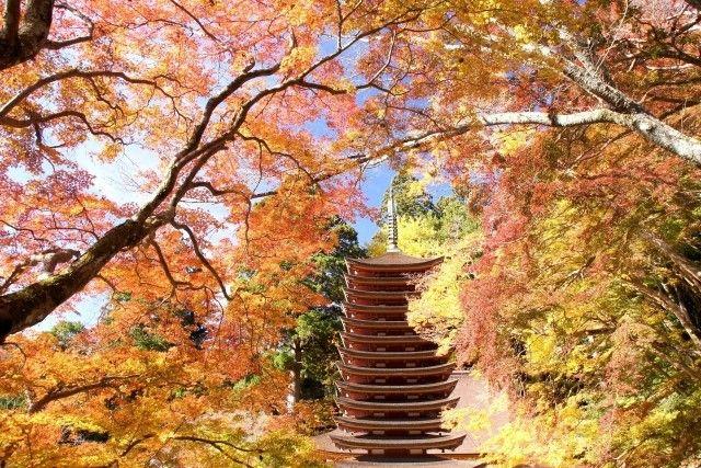 tanzan jinja pagoda