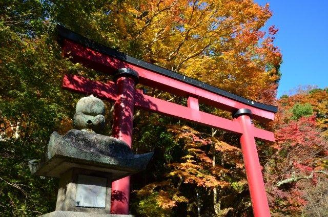 tanzan jinja torii