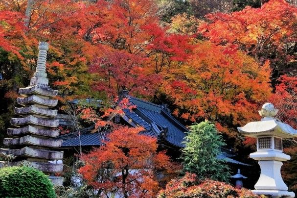 eigen-ji autumn