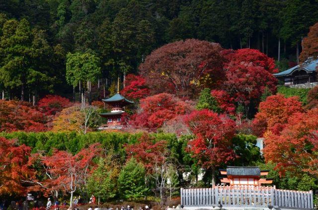 katsuo-ji pagoda