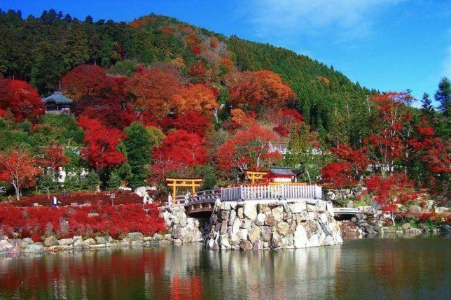 katsuo-ji autumn