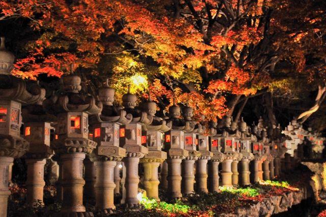katsuo-ji stone lanterns
