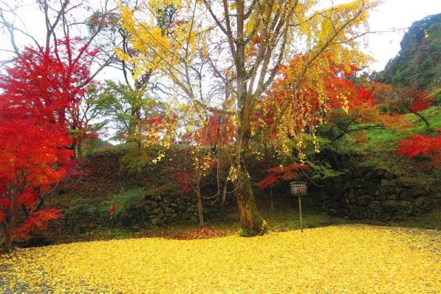 shoryaku-ji