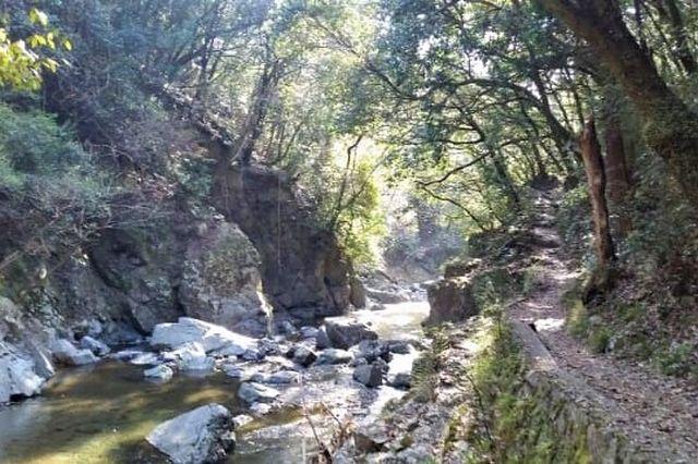 settukyo trail