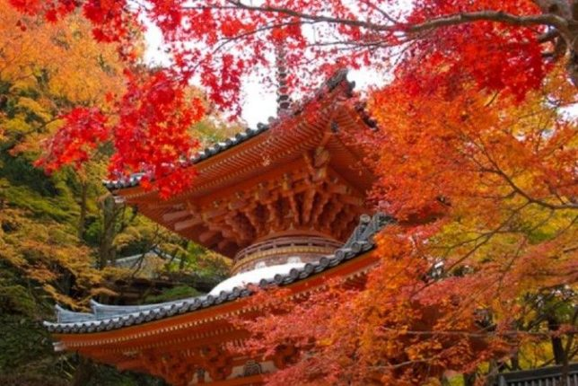 daiitoku-ji ushitakisan