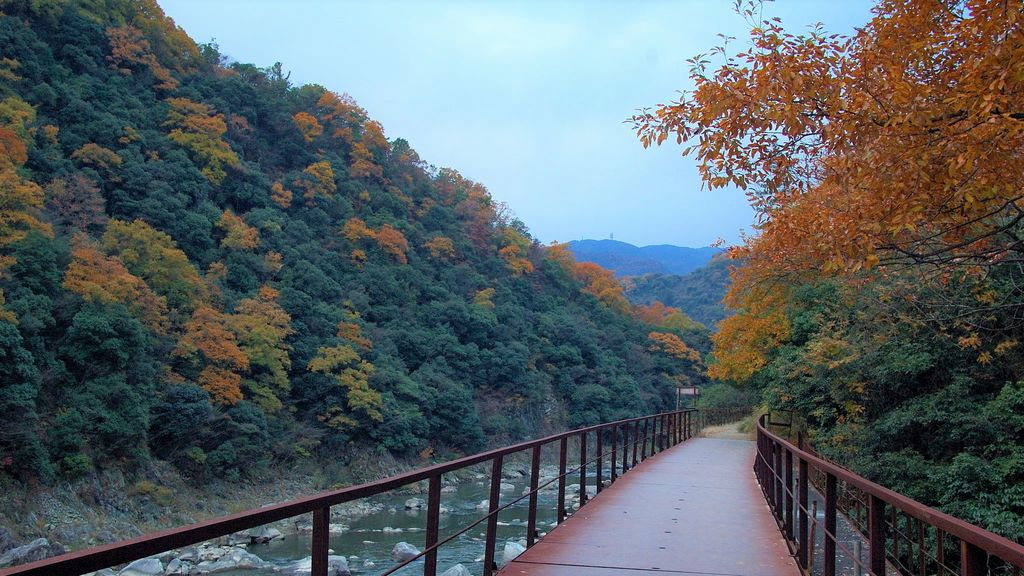 takedao trail autumn
