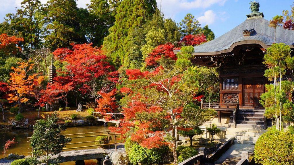 seiryo-ji garden