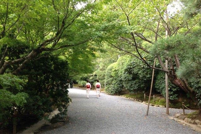 ryoan-ji stroll garden