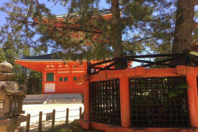 Koyasan Sanko-no-matsu pine tree